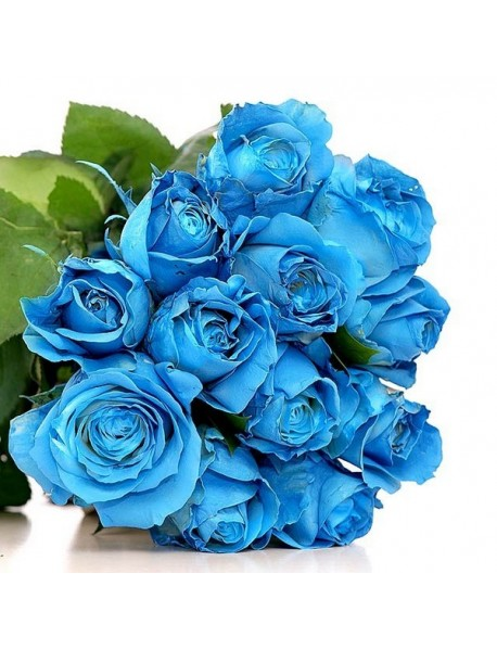 15 Mavi Gül